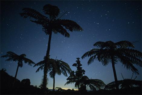 天际-星光夜雨